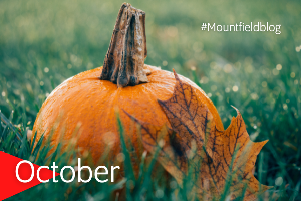 Mountfield Blog