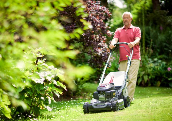 SP 555 V mountfield lawnmower